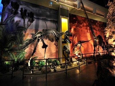 MEB 5 bin öğrenci Jurassic Land ücretsiz gezi