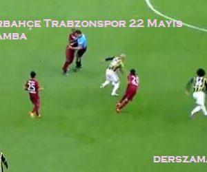 Fenerbahçe Trabzonspor Türkiye Kupası Finali 2013