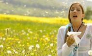 Yazın Yaz Mevsiminde Ortaya Çıkan Alerjik Hastalıklar Korunma Yöntemleri