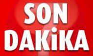 Ahmet Ertok Kimdir