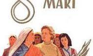 8 mart dünya kadınlar günü hakkında yazı