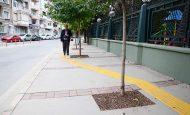 Yollardaki Sarı Çizgiler Nedir