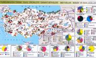 Akdeniz Bölgesinde Yetişen Ürünler