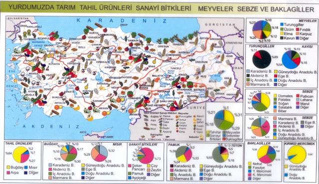 turkiye-tarim-haritasi-640x369