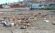 Çevre Kirliliği Kompozisyon