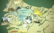 Marmara Bölgesi Tarım Ürünleri Nelerdir