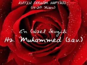 YeniMakale_kutlu_dogum_haftasi_2