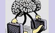 Beyin Göçü Nedir Kısaca