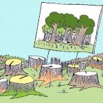 Ağaç sevgisi (!)