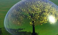 Doğal Hayatı Koruma Derneğinin Amacı Nedir