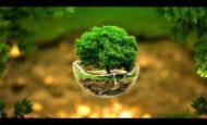 Doğayı Neden Korumalıyız Kompozisyon