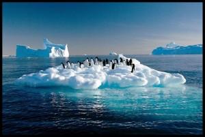 küresel-ısınma-Önlemek-için-Ne-Yapmalıyız