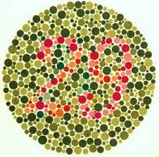 renk_körlüğü_testi