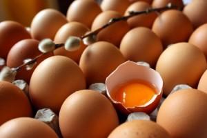 yumurta-450x300