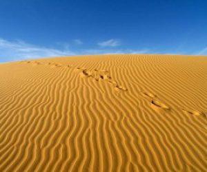 Çölde Toprak Oluşumu Sürekli Gecikir Neden