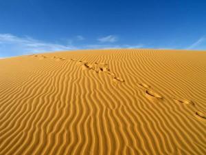 çöl iklimi resimleri
