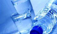 Canlılar İçin Suyun Önemi Nedir