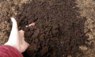 Toprak Nedir Çeşitleri Nelerdir