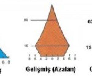 Nüfus Piramidi Nedir Kısaca
