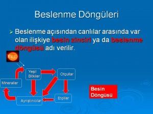 www.erguven.net-dUnya_Sekilleri_(33)