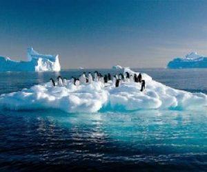 Küresel İklim Değişikliğinin Nedenleri