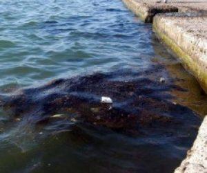 Deniz Kirliliğini Önlemek İçin Neler Yapmalıyız