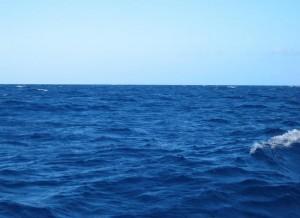 deniz-fx1sffub