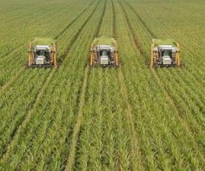 Tarımın İnsan Hayatındaki Önemi