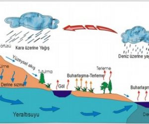 Hidroloji Nedir