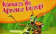Ağustos Böceği İle Karınca Hikayesi