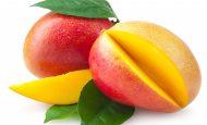 Mangonun Faydaları Nelerdir