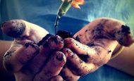 Ahlaklı ve Hoşgörülü İnsanlar Olmak Bize Yakın Çevremize ve Genel Olarak Topluma Ne Gibi Faydalar Sağlar
