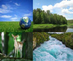 Toprak Su Orman Maden Gibi Kaynakların Hızlı ve Bilinçsizce Tüketilmesinin Sonuçları