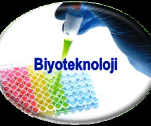 Biyoteknoloji Nedir