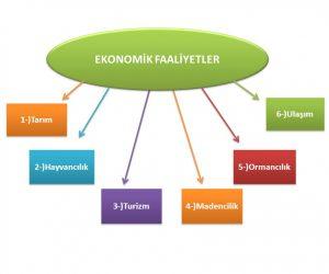 Ekonomik Faaliyetlerin Ülke Ekonomisindeki Yeri ve Önemi Nedir