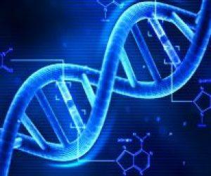 DNA Nedir Ne İşe Yarar