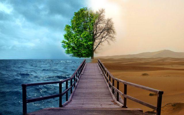 doğal kaynakları korumak ile ilgili görsel sonucu