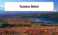 Tundra İkliminin Görüldüğü Yerler