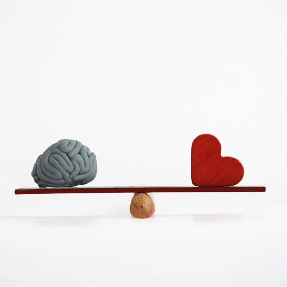 duygu mu akıl mı ile ilgili görsel sonucu