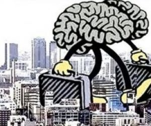 Beyin Göçü Kavramını Araştırınız Beyin Göçünü Ülkemiz ve Vatanseverlik Açısından Değerlendiriniz