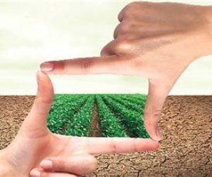 Doğal Kaynakların Ekonomiye Etkisi Nelerdir
