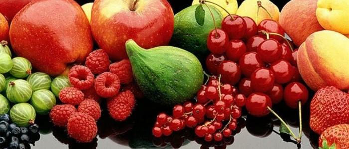 kansere karşı beslenme ile ilgili görsel sonucu