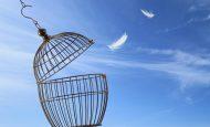 Düşünce ve İfade Özgürlüğü Hakkı Nedir