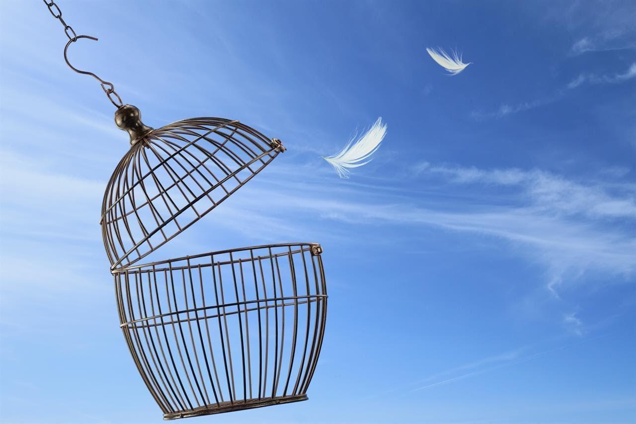 düşünce özgürlüğü ile ilgili görsel sonucu