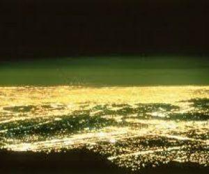 Işık Kirliliğinin Nedenleri Ve Olumsuz Etkileri Nelerdir?
