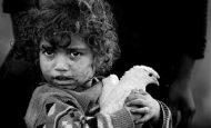 Barış ve Çocuk İle İlgili Slogan