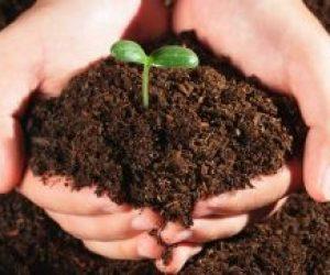 Topraklarımıza Sahip Çıkmak Onları Doğru Kullanmak İçin Neler Yapabiliriz