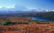 Tundra İklimi Nerelerde Görülür Özellikleri Nelerdir?