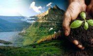 Doğada Bulunduğu Haliyle Kullandığımız Maddeler Nelerdir?