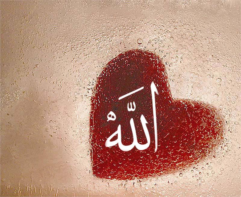 Картинка с надписью про аллах, девушек надписью